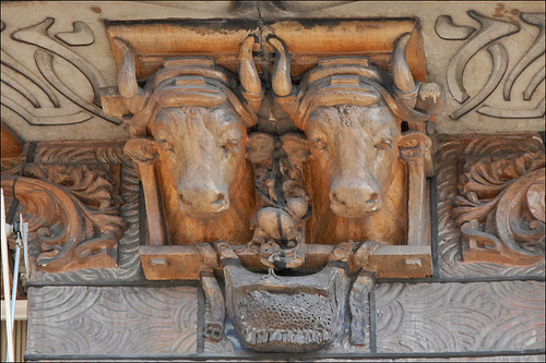 buffalo heads holding up balcony art nouveau paris buidling1 THE HUMAN STONE