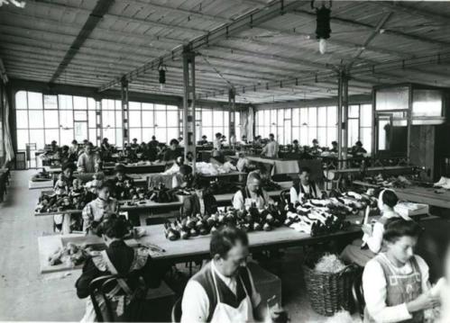 Steiff factory inside